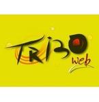 Web Rádio Tribo