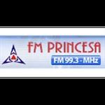 Rádio FM Princesa 99.3