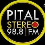 Pital Stereo 98.8 FM