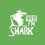 Guam Shark – KZGU