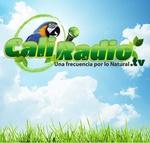 CaliRadio
