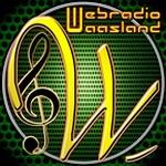 Internet Radio Waasland
