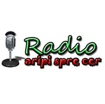 Radio Aripi Spre Cer – Instrumental
