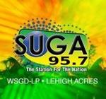 SUGA 95.7 FM Radio Station – WSGD-LP