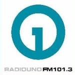 Radio UNO FM 101.3