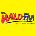 99.1 Wild FM – DXRT