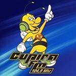 Rádio Cupira FM
