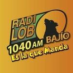 Radio Lobo Bajio – XHY