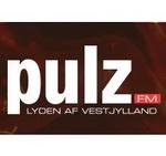 Pulz Fm