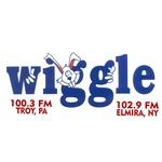Wiggle 100 – WHGL-FM
