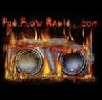 Pro Flow Radio