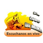 El Lobo de Mina – XHMTV