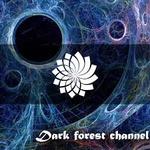PsyStation – Forest Psy Trance