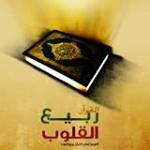 Rabee Al Qloub