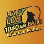 Radio Lobo Bajio – XEY