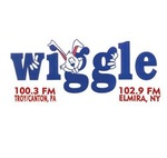 Wiggle 100 – W275AB