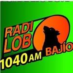 Radio Lobo Bajio – XESAG
