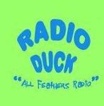 Radio Duck