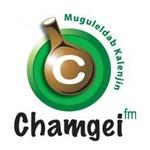 Royal Media Services – Chamgei FM
